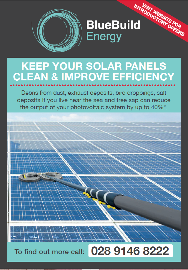 Panel Cleaning Flyer